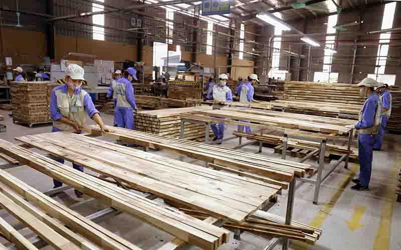 Kiểm soát rủi ro trong xuất, nhập khẩu mặt hàng gỗ
