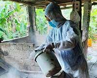 Phòng chống dịch bệnh trên đàn gia súc: Phát huy vai trò lực lượng thú y viên cơ sở