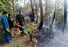 Ngăn chặn cháy rừng: Cần nêu cao ý thức của người dân