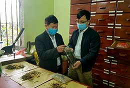 Hội Đông y thành phố Lạng Sơn: Phát triển y dược cổ truyền, nâng cao chất lượng khám chữa bệnh