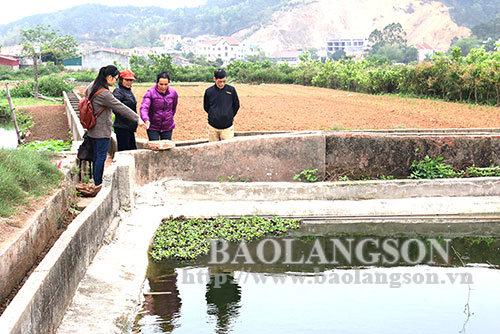 Hiểm nguy từ những hố trữ nước tưới nông nghiệp