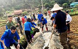Bình Phúc: Quyết tâm đạt chuẩn nông thôn mới