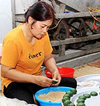 Người dân Mai Pha: Tăng thu từ nghề làm bánh ngải