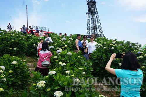 Gần 10.000 lượt khách đến Mẫu Sơn trong 2 ngày