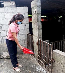 Tái đàn lợn ở Lộc Bình: Còn nhiều khó khăn