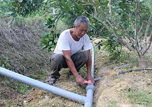 Mô hình tưới nhỏ giọt ở Bắc Sơn: Góp phần nâng cao năng suất, giá trị kinh tế cây ăn quả