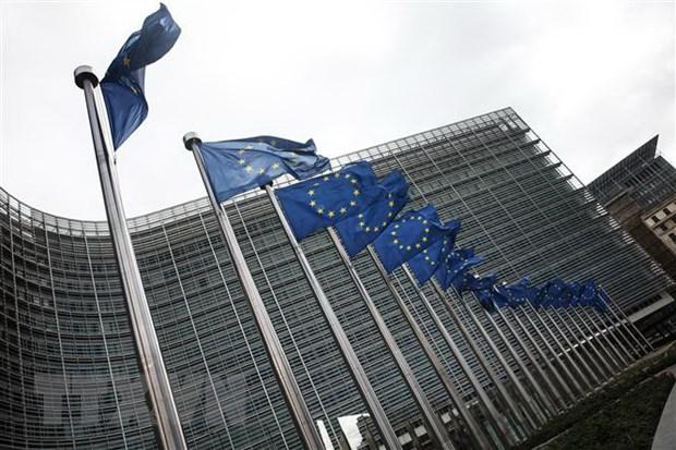 Olympic Tokyo: Đoàn Slovenia được đề xuất mang theo cả lá cờ của EU