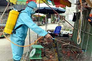 Đình Lập: Chặn nguy cơ xâm nhiễm cúm A/H5N8