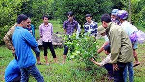 Bắc Sơn: Quan tâm đào tạo nghề cho lao động nông thôn