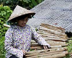 Nông dân Cao Minh phát huy thế mạnh từ cây quế
