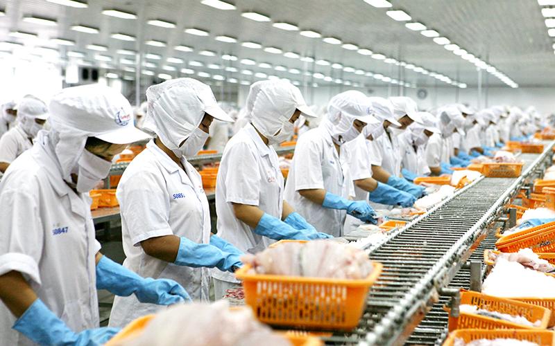 Hỗ trợ doanh nghiệp duy trì sản xuất, tiêu thụ nông sản