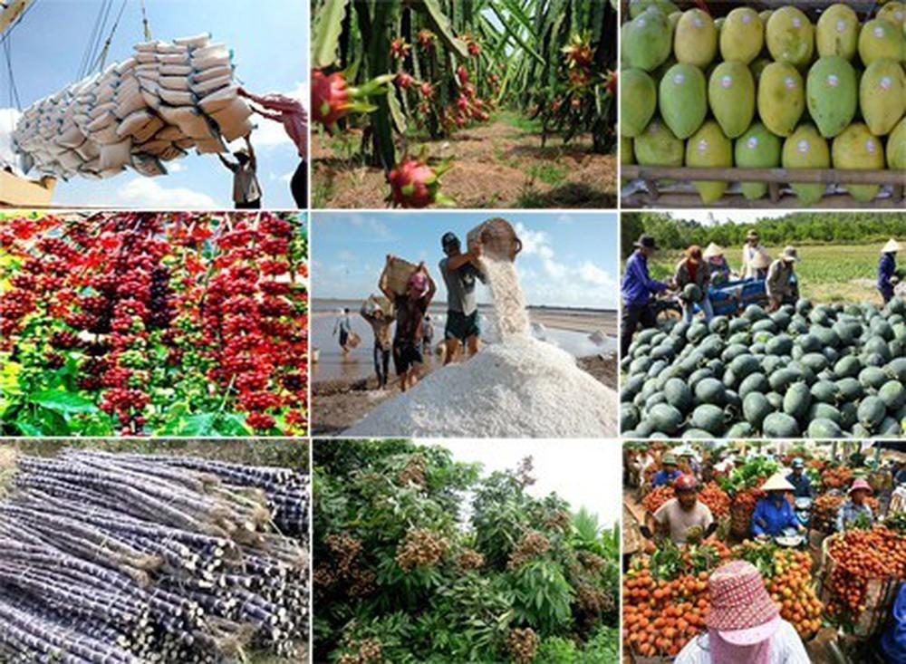 DN xuất khẩu nông sản quyết tâm giữ sản xuất trong điều kiện phải an toàn