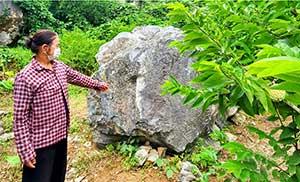 Hữu Lũng: Khai thác đá ảnh hưởng đến vùng trồng na