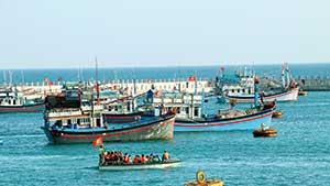 Âu tàu, làng chài ở Trường Sa: Nối dài những chuyến vươn khơi