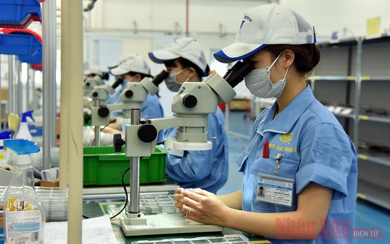 Gần 1.300 lao động được hỗ trợ đào tạo, duy trì việc làm