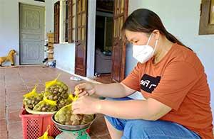 HTX nông nghiệp An Sơn: Chú trọng sản xuất, nâng cao giá trị sản phẩm