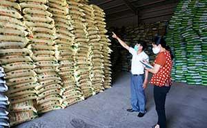 Công ty Cổ phần vật tư nông nghiệp: Đảm bảo sản xuất kinh doanh trong bối cảnh dịch bệnh