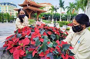 Thành phố Lạng Sơn: Sôi nổi các hoạt động hướng tới kỷ niệm 190 năm ngày thành lập tỉnh