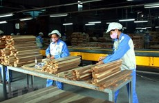Forestry export expected to hit record 11.3 billion USD in 2019