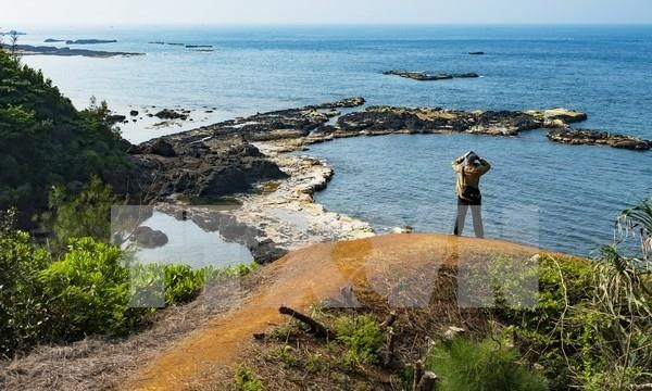 Tourists to Ly Son island district surge