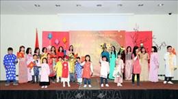 Vietnamese embassies celebrate Lunar New Year festival