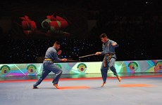Algerian tournament promotes Vietnamese martial art