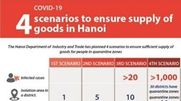 Hanoi outlines scenarios for goods supply amid COVID-19 outbreak