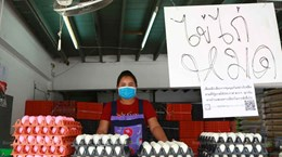 Thailand bans export of chicken eggs for seven days