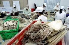 Squid, octopus exports down 21.2 percent
