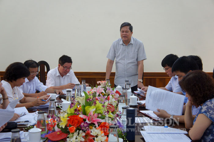 The mission of the Central Propaganda Department inspected and surveyed in Lang Son province