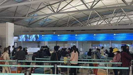 More than 350 Vietnamese citizens return home from Canada, RoK
