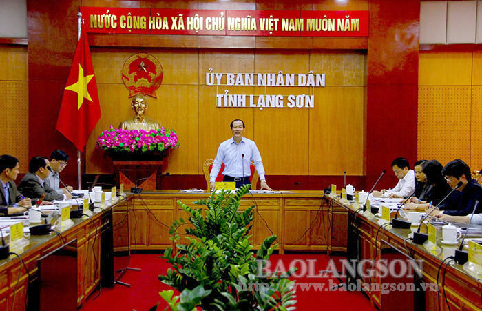 The Provincial People's Committee reviewed draft projects and plans in the cultural field