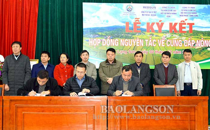 Signing a contract in principle for the supply of agricultural products
