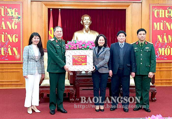The High Command of Military Region I visited and extended Tet wishes to Lang Son Provincial Party Committee