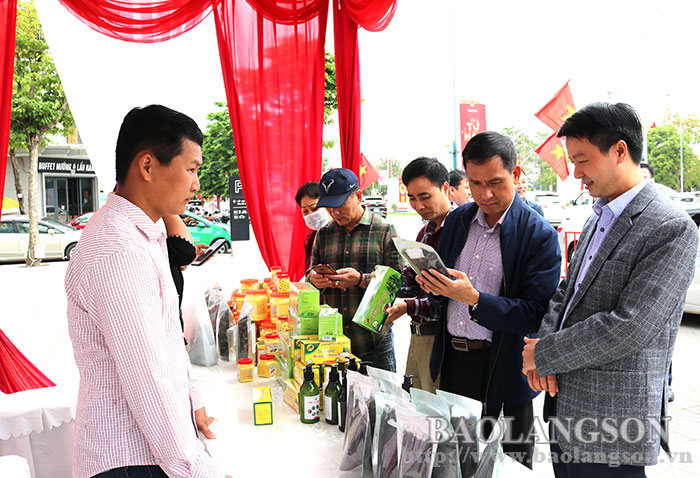 The display, introduction and sale of potential and key products of the province