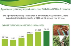 Agro-forestry-fishery export earns over 30 billion USD in 9 months