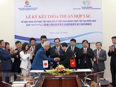 Vietnam, Japan step up human resources development cooperation