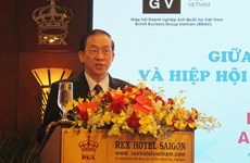 HCM City's authorities meet British firms to tackle business difficulties