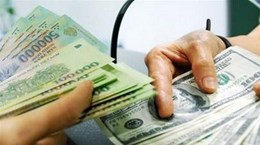 Reference exchange rate down 1 VND at week's beginning