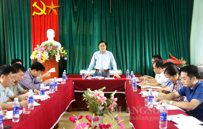 Provincial People's Committee leader inspects construction of road to Tan Yen commune's centre
