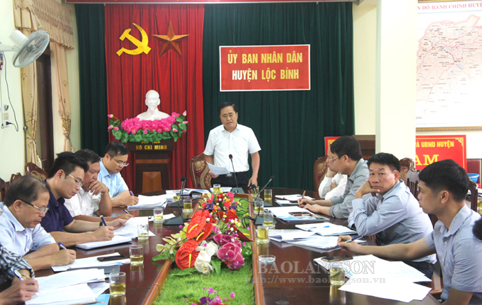 Provincial leader inspects key transport projects in Loc Binh, Dinh Lap districts