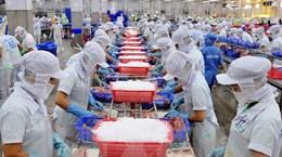 提高企业进入欧盟市场的能力