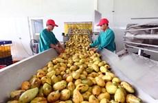 """农业与农村发展部部长阮春强:企业是引领农产品价值链的""""火车头"""""""
