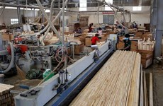 力争实现2020年林产品出口增长10%