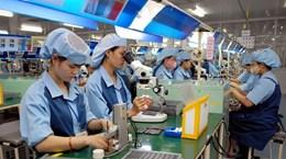 私营企业是越南经济中的一个亮点