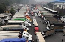 越南农产品对中国出口活动开始恢复但货物通关速度缓慢