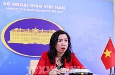 越南对国家粮食安全保障和大米出口给予高度重视