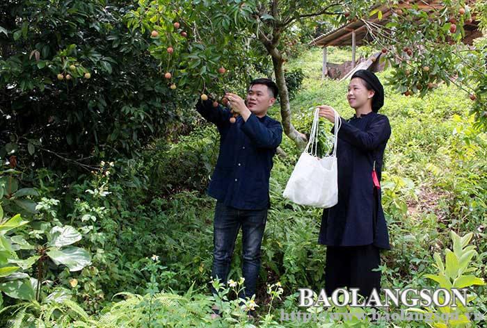 商定保护San Chi民族服饰的文化价值