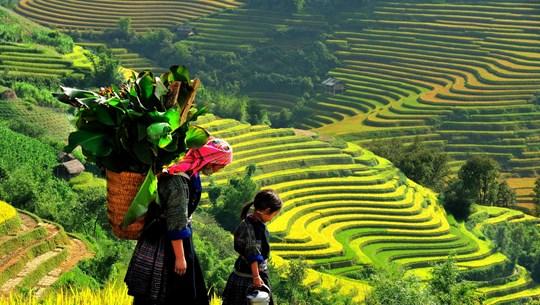 越南北部七个最佳秋季旅行目的地