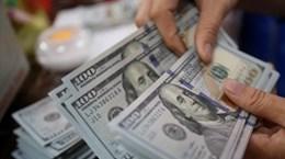 10月28日越盾对美元汇率中间价下调3越盾